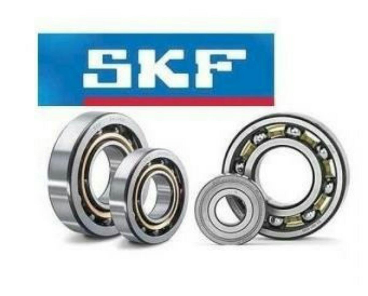 ruleman 6301 SKF fances